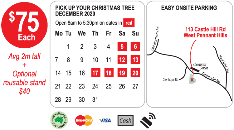 Where to buy a real Christmas tree in Sydney 2020